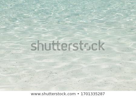 Przezroczysty wody płytki plaży tekstury charakter Zdjęcia stock © Arrxxx