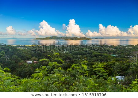 Fantastik görmek üst Seyşeller cennet Stok fotoğraf © bubutu