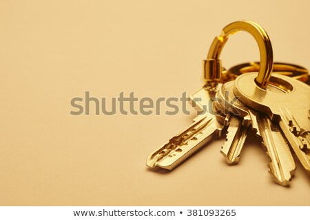 buy concept keys with golden keyring stock photo © tashatuvango