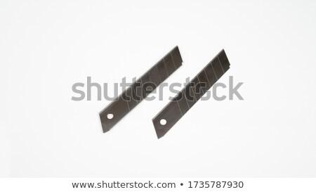 two swiss Penknifes on a white background Stock photo © ozaiachin