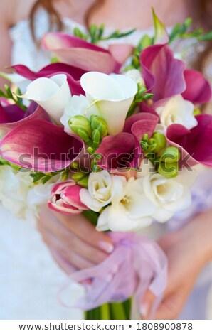 boda · familia · naturaleza · Pareja · funny · bambú - foto stock © adrenalina