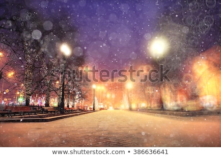 Zimą aleja drogowego lasu drzew mroźny Zdjęcia stock © zhekos