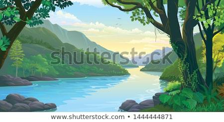 Stock fotó: Higgadt · folyó · erdő · törött · fa · fölött