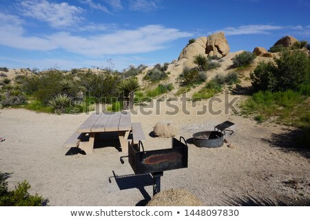 scenic Jumbo rock Stock photo © meinzahn
