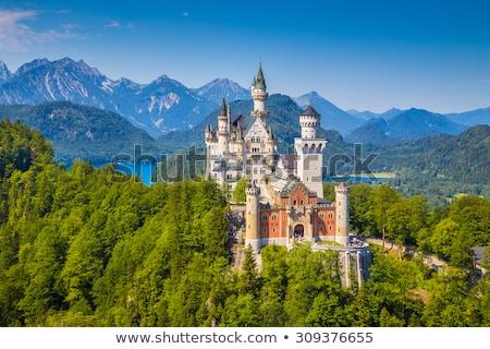 kasteel · Duitsland · mooie · zomer · zonsondergang - stockfoto © andreykr