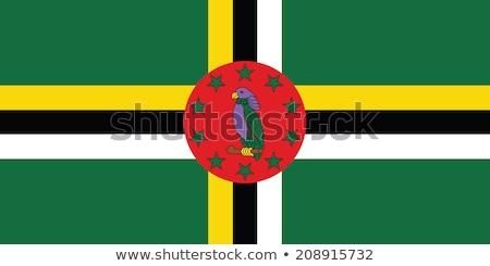 Bandiera Dominica illustrazione bianco segno verde Foto d'archivio © Lom