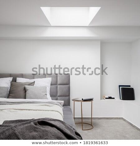 A big elegant house Stock photo © bluering
