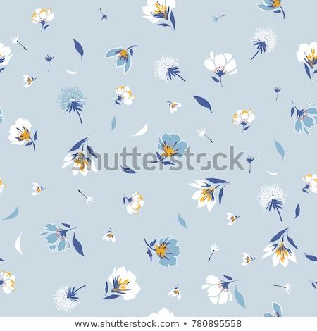 niebieski · kwiatowy · zaproszenie · szablon · ilustracja · obraz - zdjęcia stock © sarts