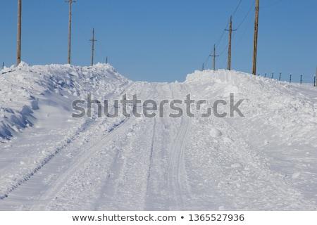 Snowed country road Stock photo © Kidza
