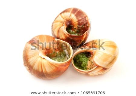 Snails with Garlic Butter Stock photo © zhekos