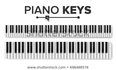 Fortepian klawiatury wektora realistyczny odizolowany ilustracja Zdjęcia stock © pikepicture