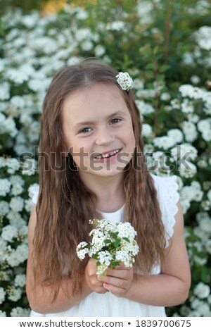 Bush flowers with small white flowers standing in the spring. Stock photo © Klinker