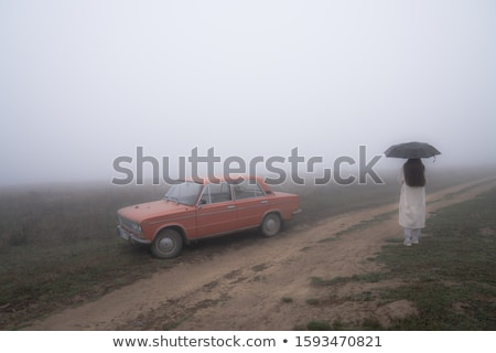 Stock photo: Girl at spring field in fog time.