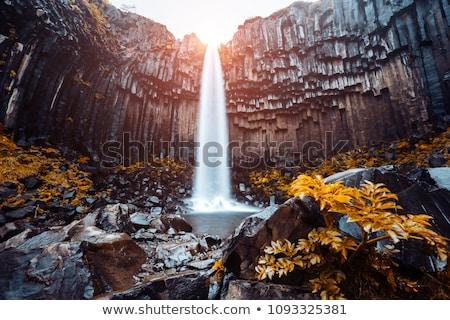 IJsland · waterval · park · hemel · voorjaar · reizen - stockfoto © leonidtit