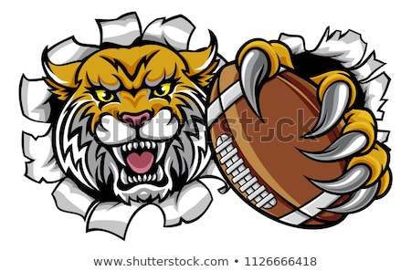 Wildcat American Football Mascot Stock photo © Krisdog
