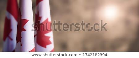 Canadá · bandeira · blue · sky · 3d · render · praça · imagem - foto stock © romvo