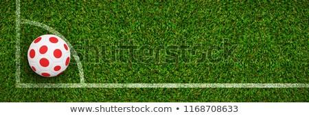 Futball Japán színek futballpálya terv futball Stock fotó © wavebreak_media