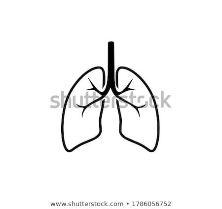 A Vector of Lung Bacteria Stock photo © bluering