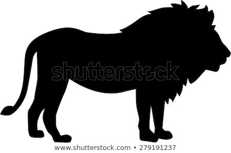 черный · лев · геральдика · татуировка · дизайна · изолированный - Сток-фото © krisdog