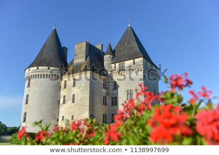 Castle of Bories, Antonne et Trigonant in Dordogne Stock photo © FreeProd
