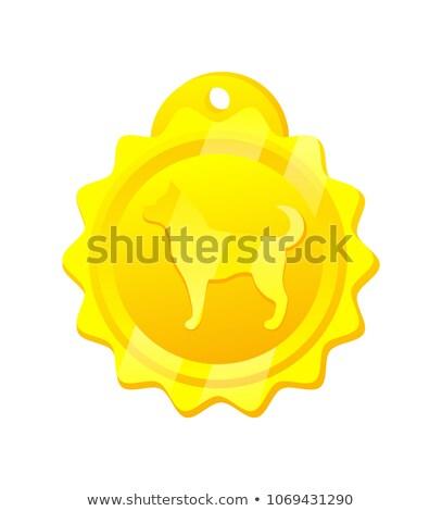 Golden Medal for Dog Rounded Vector Illustration Stock photo © robuart