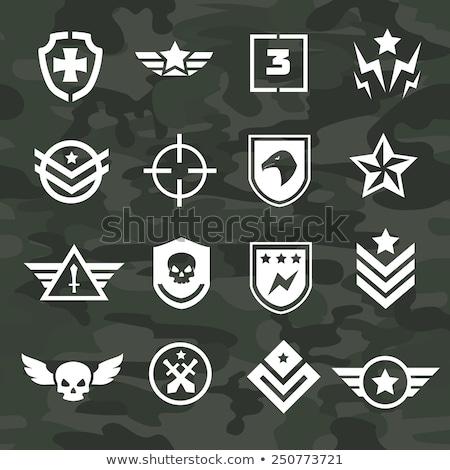 Militar logotipo crânio asas escudo pistola Foto stock © popaukropa
