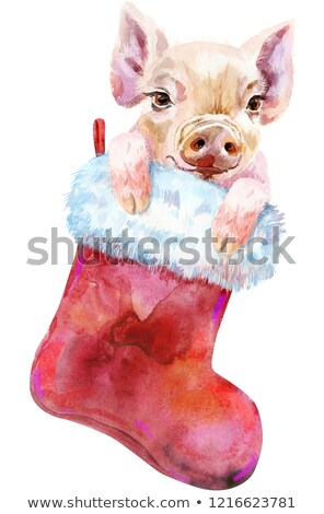 Acuarela Navidad rojo calcetín pequeño cute Foto stock © Natalia_1947