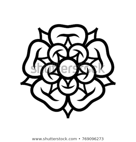 Rose (Queen of flowers), emblem of love, beauty and perfection. Stock photo © Glasaigh