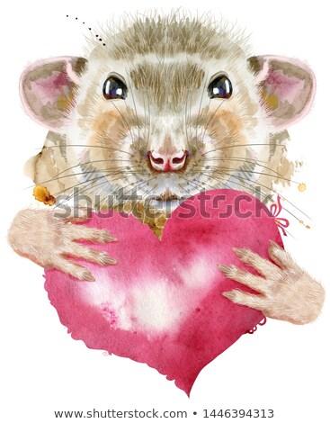 Aquarel portret rat roze hart cute Stockfoto © Natalia_1947