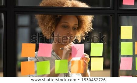 kezdő · szakértő · jegyzetek · amatőr · szakképzett · jelentés - stock fotó © pressmaster