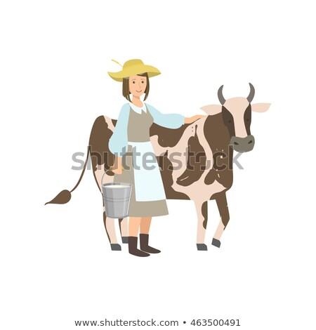farmer woman milking cow countryside vector stock photo © robuart