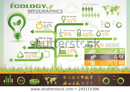 New sustainable world concept infographic  Stock photo © cienpies
