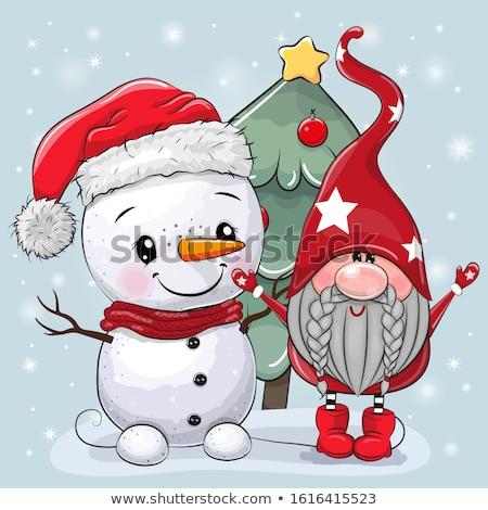 Beautiful Christmas card with gnome and snowman Stock photo © balasoiu