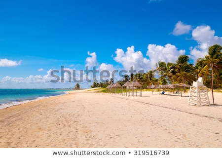 Küba · plaj · su · deniz · tablo - stok fotoğraf © phbcz