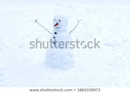 Boneco de neve inverno escultura isolado branco fadas Foto stock © robuart