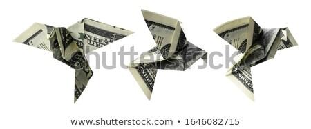 Honderd vorm vogels vlucht witte Stockfoto © butenkow