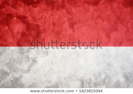 Bandeira Mônaco parede de tijolos pintado grunge textura Foto stock © creisinger