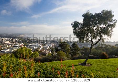 Panorama of Ventura from Grant Park Stock photo © backyardproductions