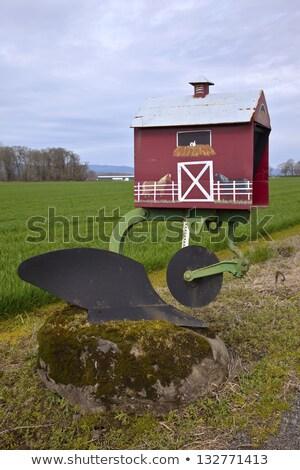 メールボックス オレゴン州 草 カラフル ストックフォト © Rigucci