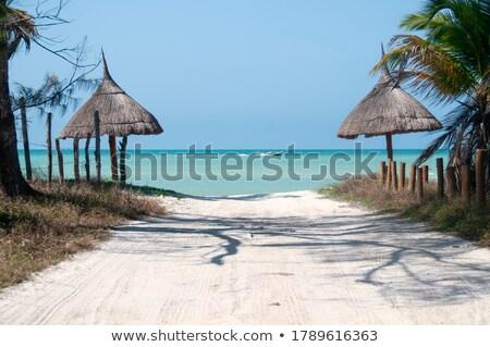 pastoral · plaj · sahne · mavi · deniz - stok fotoğraf © moses