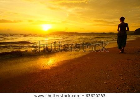 guardando · tramonto · lago · vista · posteriore · ritratto - foto d'archivio © hasloo