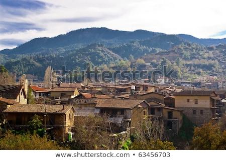 High angle view of a village on a mountain, Kakopetria, Cyprus Stock photo © Kirill_M