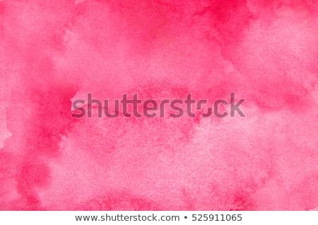 rosa · acquerello · macchia · effetto · acqua · texture - foto d'archivio © burakowski