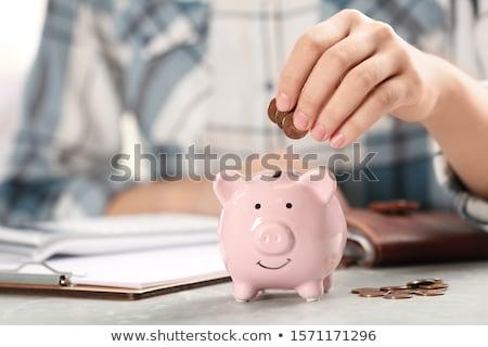 kobieta · interesu · banku · piggy · atrakcyjny · młodych · stałego · stwarzające - zdjęcia stock © dash