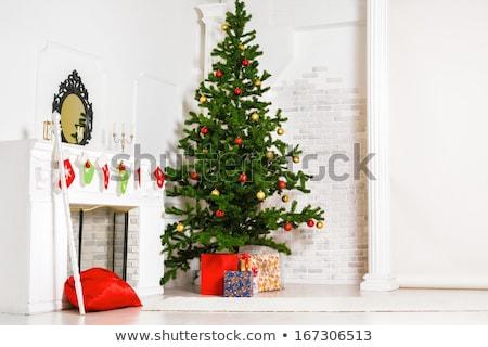 family is mirroring in christmas tree balls stock photo © meinzahn
