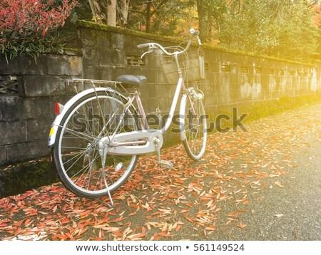 Sonbahar kırmızı yaprakları tuğla duvar Retro filtre Stok fotoğraf © happydancing
