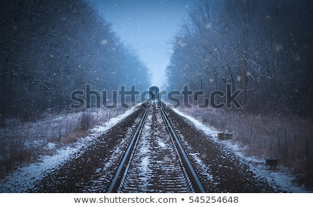Tracks into the mist stock photo © olandsfokus