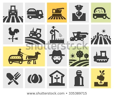 Stockfoto: Rups · trekker · geïsoleerd · witte · achtergrond · veld