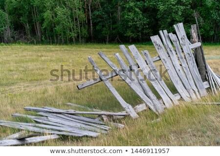 Oude gebroken houten hek Stockfoto © chrisga