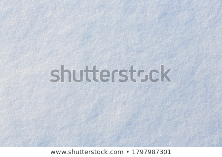 Icy view Stock photo © olandsfokus